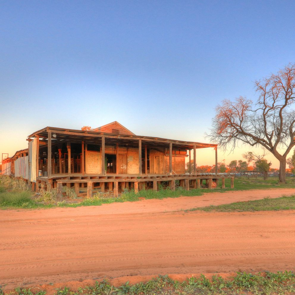 Charlotte Plains Woolshed and Yards